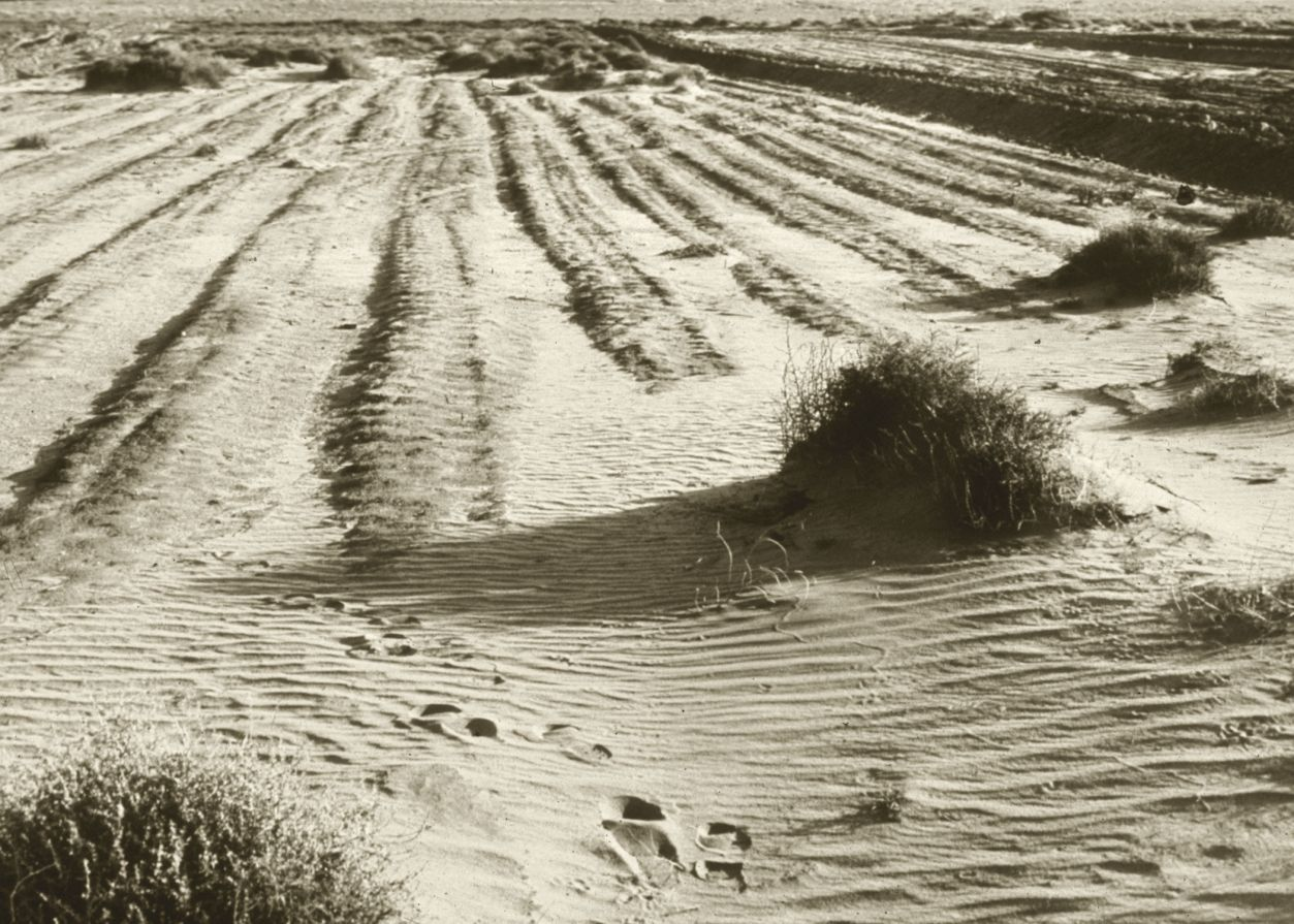 dust-bowl-creative-commons-Department-of-Agriculture-USDA